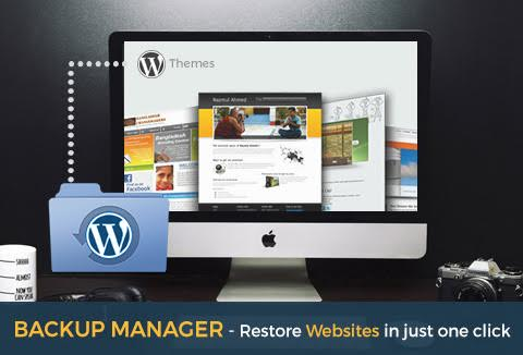 Grab this great plugin - Backup Manager to secure your website.