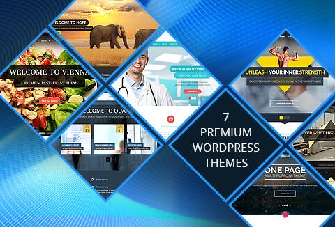 This bundle contains 7 elegant WordPress premium themes from Microthemes.