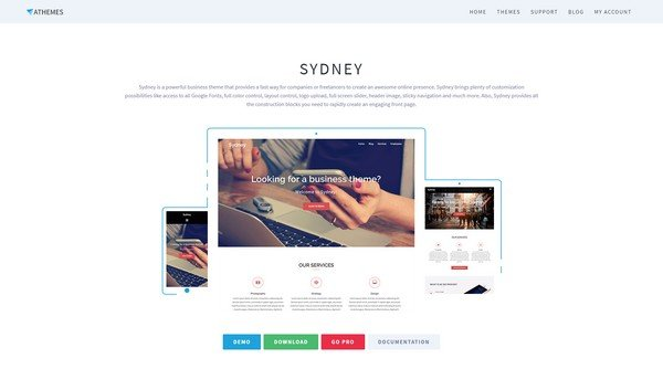 Sydney is a clean and high-end free WordPress theme from aThemes.