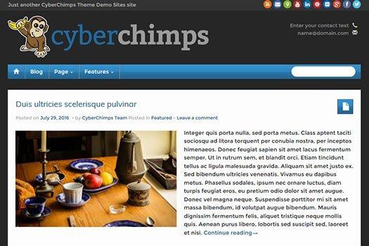 iFeature Pro WordPress Theme