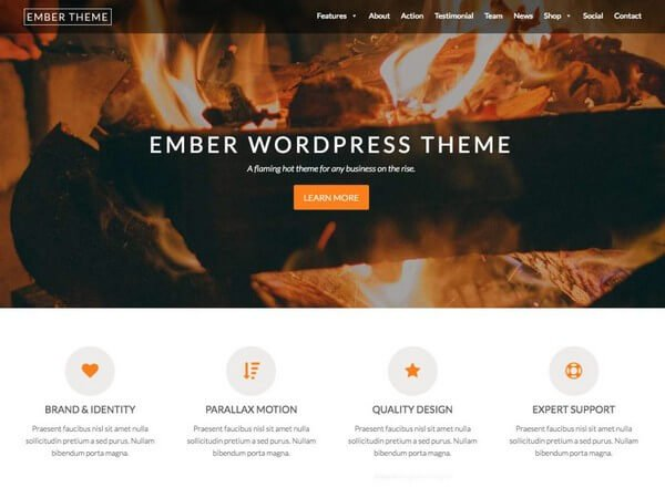 Ember is a modern flexible and responsive WordPress theme ideal for professionals, freelancers, and agencies.