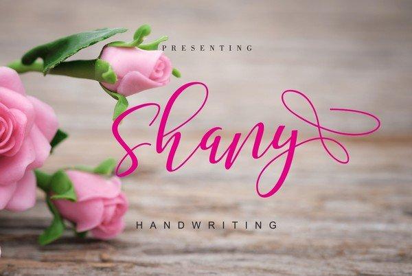 Shany is a handwritten font.