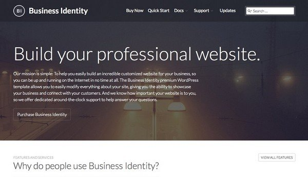 Business Identity is a business WordPress theme for any tech-oriented website.