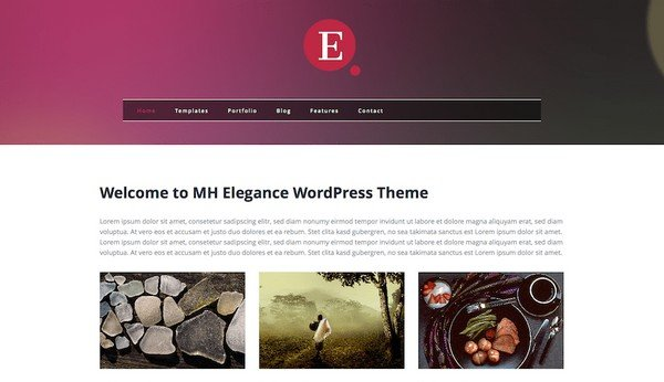 MH Elegance is a beautiful WordPress theme for any startups.