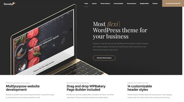 Ronneby is a modern and versatile WordPress theme.