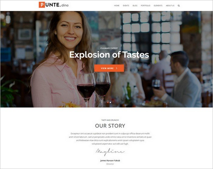 Punte is a free, flexible theme from AccessPress Themes.